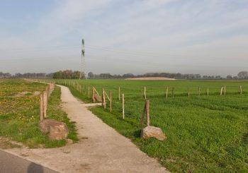 Trierveld-Koeweide